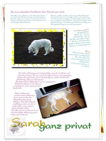 "Bild ""http://www.sarahsahni.de/bilder_sarah-fotoalbum/340x/Sarah-Fotoalbum_Seite_06.jpg"""